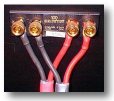 Soundstage Synergizing Bi Amp Or Bi Wire Bi Golly 03